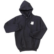 Video production- Ultimate Cotton Hoodie PC90h -